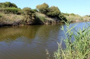 New Testament popular Jordan River