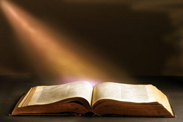 Job 19:26 Out of My Flesh I Shall See God