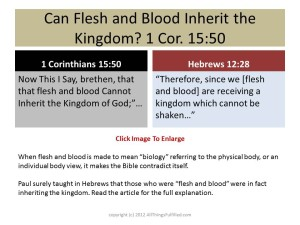 Flesh and Blood 1 Corinthians 15