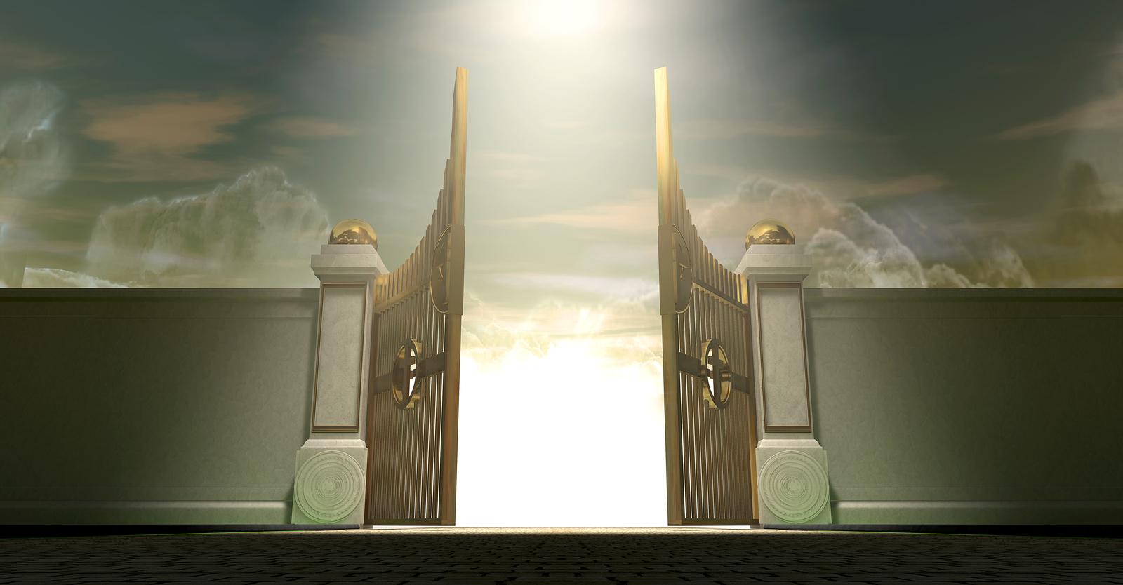 Ворота открыты ворота в новомосковске